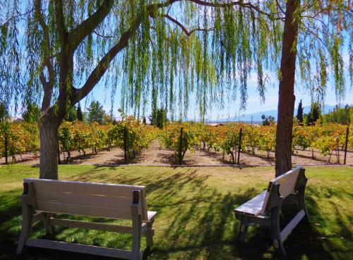 pahrump-valley-winery-tour-2
